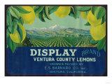 Display Lemon Label - Ventura, CA Prints