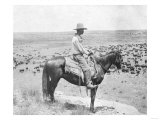 Cowboy on Horseback Watches His Herd Photograph - Texas Posters