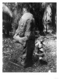 Mayan Stone Monument in Guatemala Photograph - Quirigua, Guatemala Prints by  Lantern Press