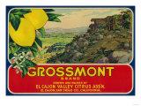 Grossmont Lemon Label - El Cajon, CA Prints