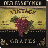 Vintage Grapes Stretched Canvas Print by Kimberly Poloson