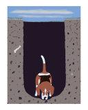 One Beagle - 1 Afternoon 限定版 : ケン・ベイリー