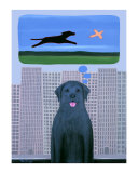 City Dog With Country Dreams Limited edition van Ken Bailey