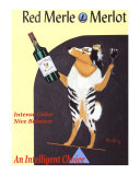 Red Merle Merlot Collectable Print by Ken Bailey