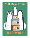 Malamute Milk Bones Collectable Print by Ken Bailey