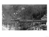 View of a Western Pacific Train on a Bridge - Plumas County, CA Posters by  Lantern Press