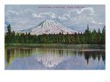Mt. Rainier View - Rainier National Park Posters