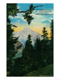 Mt. Rainier View from Indian Henry's Hunting Grounds - Rainier National Park Posters by  Lantern Press