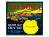 Sundown Grapefruit Label - Bryn Mawr, CA Posters by  Lantern Press