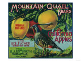 Mountain Quail Apple Crate Label - Watsonville, CA Poster by  Lantern Press