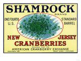 Shamrock Brand Cranberry Label Poster