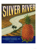 Silver River Pineapple Label - Manati, PR Posters
