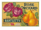 Rose Orchard Pear Crate Label - San Francisco, CA Print