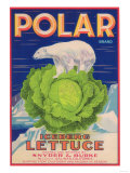 Polar Lettuce Label - Salinas, CA Posters by  Lantern Press