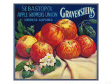 Sebastopol Gravensteins Apple Label - Sonoma, CA ポスター : ランターン・プレス