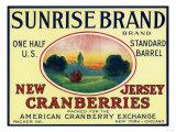 Sunrise Brand Cranberry Label Posters