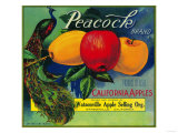 Peacock Apple Crate Label - Watsonville, CA Print by  Lantern Press