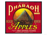 Pharaoh Apple Crate Label - Hood River, OR Print by  Lantern Press