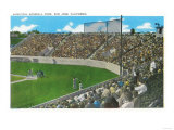 Third Base Line View of Municipal Baseball Park - San Jose, CA Posters