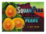 Squaw Peak Pear Crate Label - Provo, UT Print