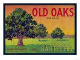 Lantern Press - Old Oaks Pear Crate Label - Bryte, CA Umění