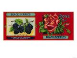 Rose Blackberry Label - San Francisco, CA Posters by  Lantern Press