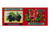 Rose Blackberry Label - San Francisco, CA Posters