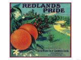 Redlands Pride Orange Label - Redlands, CA Posters by  Lantern Press