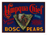 Umpqua Chief Pear Crate Label - Sutherlin, OR Posters