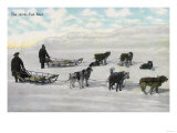 """Men with """"Artic Fast Mail"""" Dogsled - Alaska Poster"""