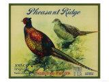 Pheasant Ridge Apple Crate Label - San Francisco, CA Print by  Lantern Press