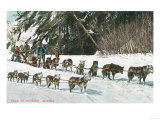 View of a Husky Dog-Sled Team - Alaska Posters by  Lantern Press