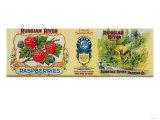 Russian River Raspberry Label - San Francisco, CA Posters by  Lantern Press