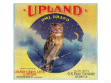 Owl Orange Label - Upland, CA Posters