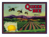 Queen Bee Lemon Label - Corona, CA Poster