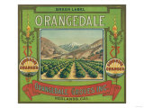 Orangedale Orange Label - Redlands, CA Print