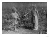 Two Young Girls Picking Cotton - Houston, TX Posters