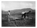Native American Plowing His Field Photograph - Sacaton Indian Reservation, AZ Posters