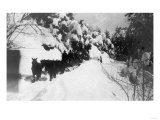 View of Stagecoach Driving through Snowy Mitchell Rd - Downieville, CA Prints by  Lantern Press