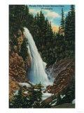 Narada Falls, Rainier National Park - Rainier National Park Prints
