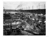 Fishermen's Terminal at Salmon Bay Photograph - Seattle, WA Posters av  Lantern Press