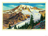 Wildflowers and Glaciers, Rainier National Park - Rainier National Park Prints by  Lantern Press