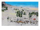 Ski Meet and Mt. Rainier - Rainier National Park Prints