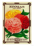 Zinnias Seed Packet Art