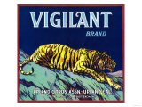 Vigilant Orange Label - Upland, CA Prints by  Lantern Press