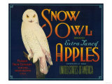 Snow Owl Apple Label - Yakima, WA Prints by  Lantern Press