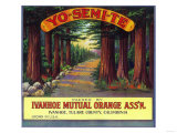Yosemite Orange Label - Ivanhoe, CA Prints