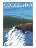 Bear Fishing - Colorado Art