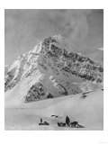 Mt. McKinley Dogsled Scene Photograph - Alaska Art by  Lantern Press