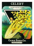 Celery Seed Packet Art